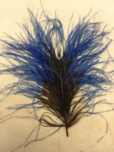OMG, it's Frankenfeather!